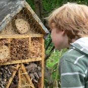 insektenhotel-bauen-intro-flickr